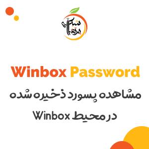 پرتقال شبکه-مشاهده پسورد ذخیره شده در محیط Winbox 1